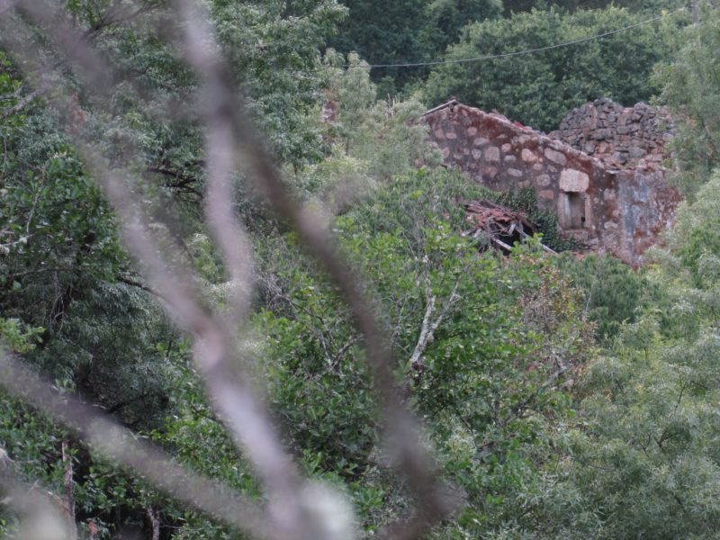 Os Muiños, Barbadás - ruinas