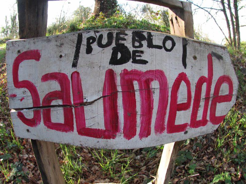 Cartel de Saumede
