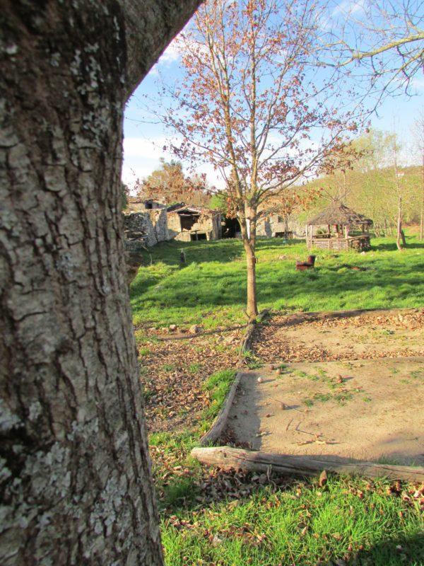 Zonas verdes en Saumede