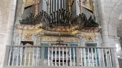 Ciclo de órgano