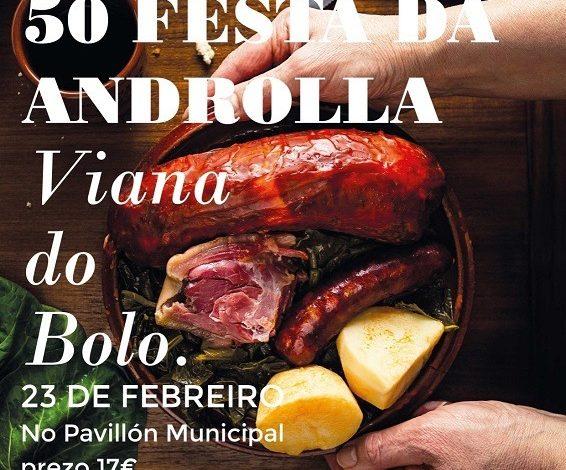Photo of Festa da Androlla de Viana do Bolo