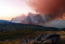 Photo of La pandemia de los incendios