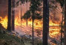 Photo of Continúan los incendios en Ourense